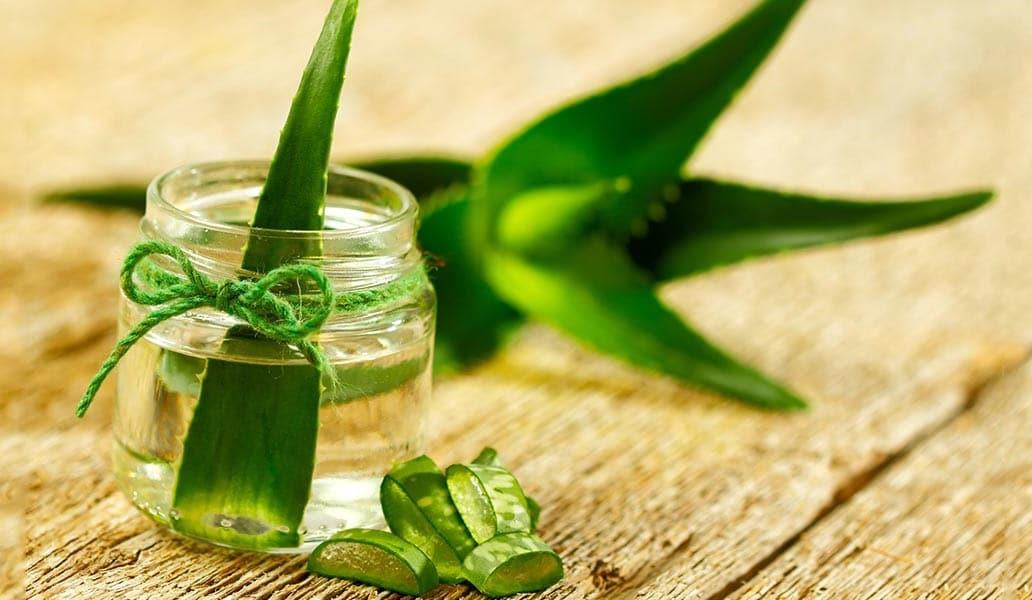 Aloe vera detoks tarifi