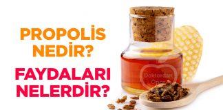 Propolis Nedir? Faydaları Nelerdir?